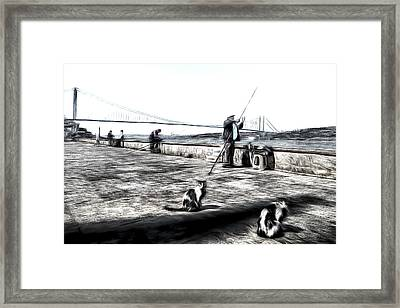 Fishermen And Cats Istanbul Art Framed Print