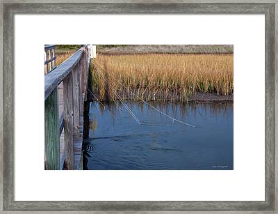 Fishin' Lines Framed Print by Kay Lovingood