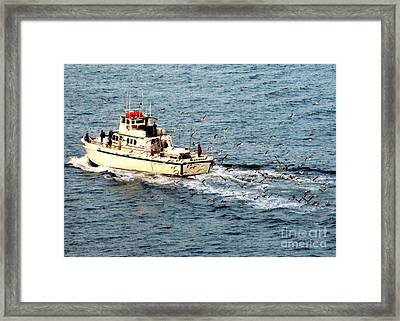 Framed Print featuring the photograph Fishing And Seagulls by Randall Weidner