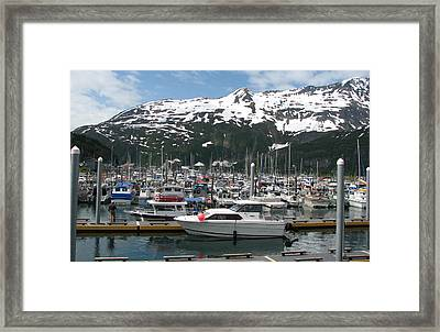 Fishing Anyone Framed Print