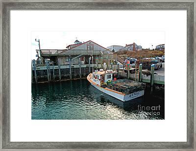 Fishing Boat At Chatham Fish Pier Framed Print
