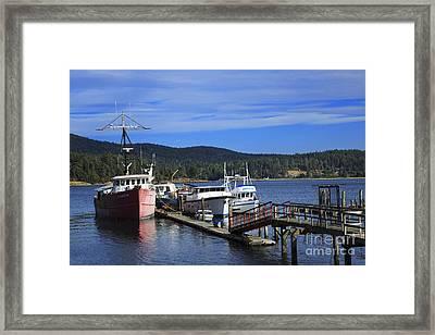 Fishing Boats In Sooke Framed Print by Louise Heusinkveld