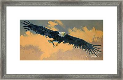Fishing Eagle Framed Print