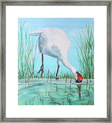 Fishing For Food Framed Print by Vicky Lilla