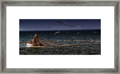 Fishing For Menhaden On The Chesapeake Bay Framed Print
