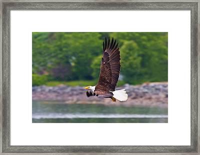 Fishing In The Rain Framed Print by Mike  Dawson