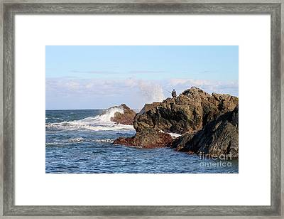 Framed Print featuring the photograph Fishing by Linda Lees