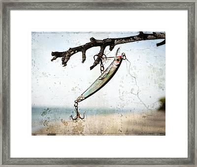 Fishing Lure Art - Caught - Sharon Cummings Framed Print