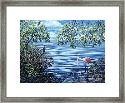 Fishing The Mangroves Framed Print by Danielle  Perry