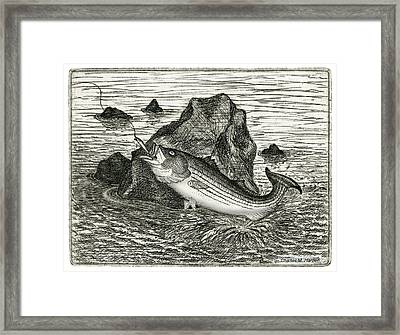 Framed Print featuring the photograph Fishing The Rocks by Charles Harden