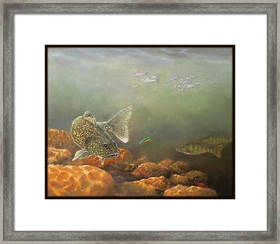 Submerged Rock Island Framed Print by Marcus Moller