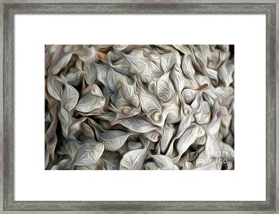 Fishmarket Abstract Framed Print