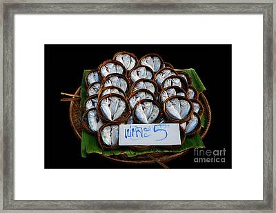 Fishs In Three  Framed Print by Ty Lee