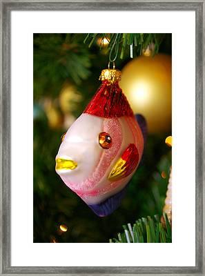 Fishy Ornament Framed Print by Jera Sky