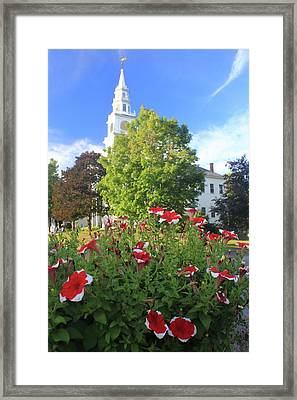 Fitzwilliam Town Common In Summer Framed Print by John Burk