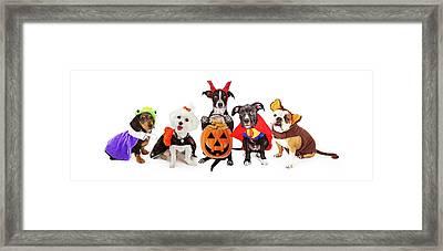 Five Dogs Wearing Halloween Costumes Banner Framed Print by Susan Schmitz