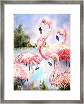 Five Flamingos Framed Print