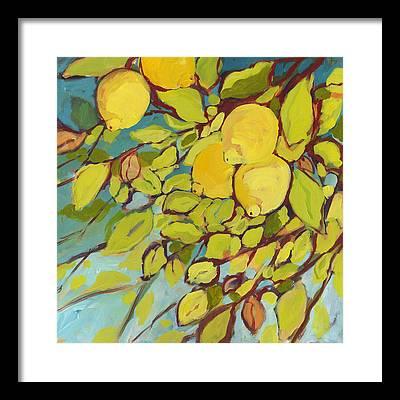 Fruit Framed Prints