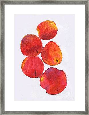 Five Nectarines  Framed Print by Andy  Mercer