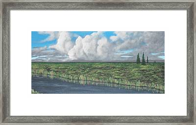 Five Pines Framed Print by Candace Shockley