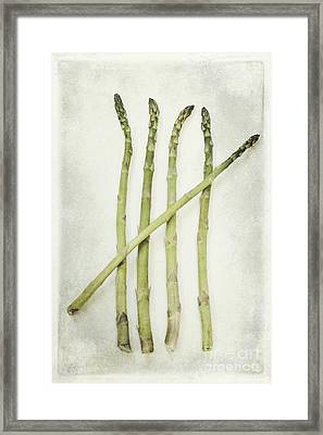 Five Framed Print by Priska Wettstein