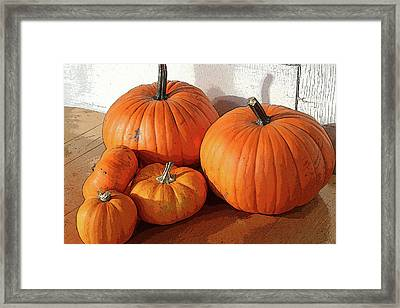 Five Pumpkins Framed Print