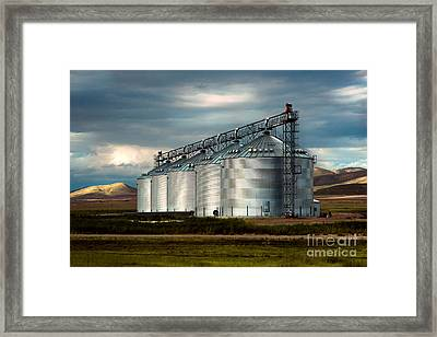 Five Silos On The Plains Of The Texas Panhandle Framed Print by MaryJane Armstrong