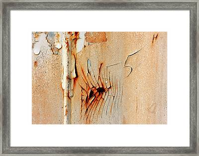 Fiveh Framed Print by Barbara  White