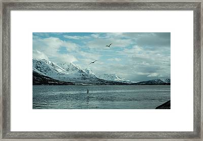Fjord Landscape In The North Of Norway  Framed Print by Tamara Sushko