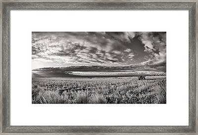 Fla-160225-nd800e-381pa85-ir-cf Framed Print