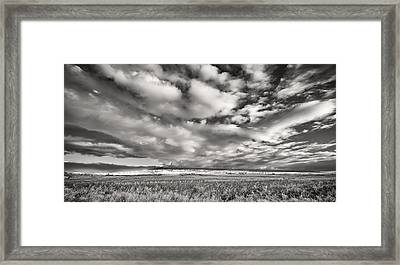 Fla-160225-nd800e-394-ir-cf Framed Print