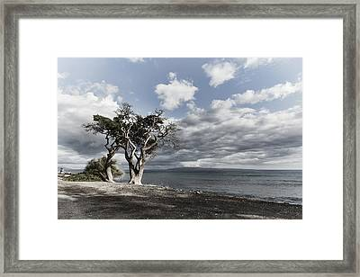 Fla-150717-nd800e-25953-color Framed Print