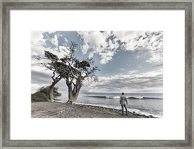 Fla-150717-nd800e-25974-color Framed Print