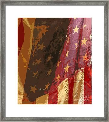 Flag 16 Framed Print by Gary Everson
