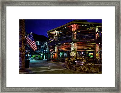 Flag And Moonshine Framed Print