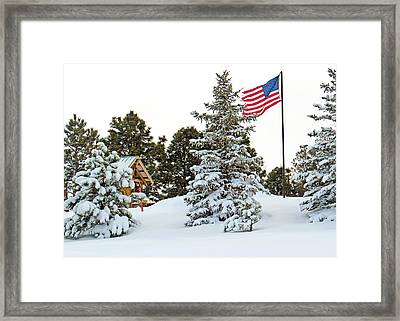 Flag And Snowy Pines Framed Print