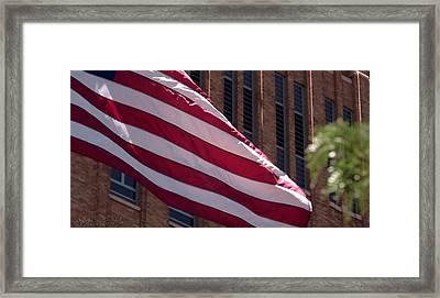 Flag Courtship Framed Print