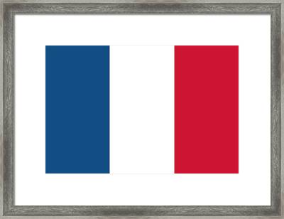 Flag Of France Framed Print by French School