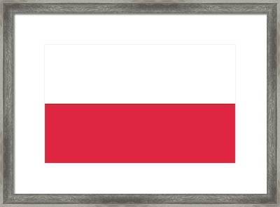 Flag Of Poland Framed Print by Roy Pedersen
