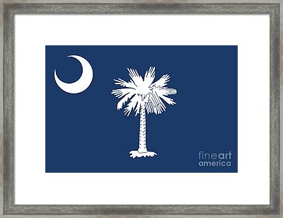 Flag Of South Carolina Authentic Version Framed Print
