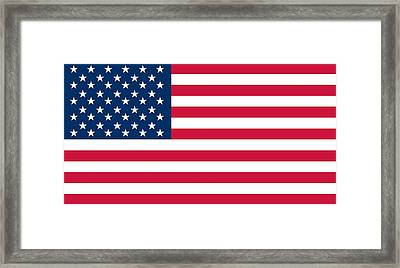 Flag Of The United States Of America Framed Print by American School