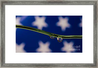 flag on a Wire Framed Print