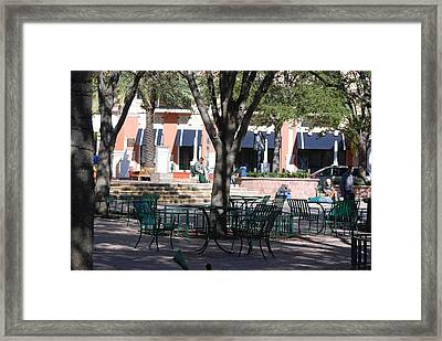 Flagler Park Framed Print by Rob Hans