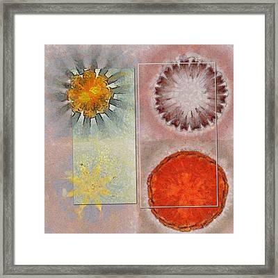 Flagonet Reality Flowers  Id 16165-093245-05721 Framed Print