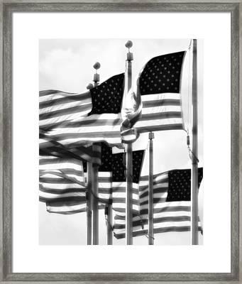 Flags Framed Print by John Gusky