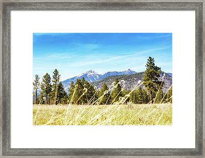 Flagstaff Field With Pines And Mountains Framed Print by Susan Schmitz