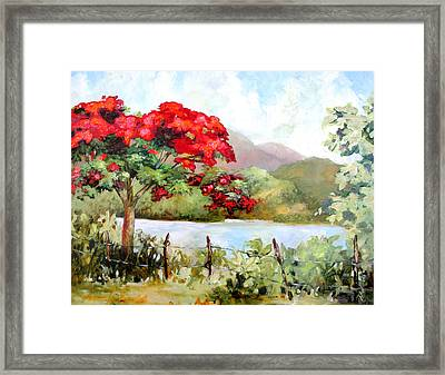 Flamboyan By The Lake Framed Print by Monica Linville