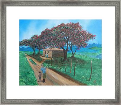 Flamboyan Framed Print by Tony Rodriguez