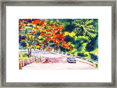 Flamboyant At Crashboat Beach Framed Print by Estela Robles