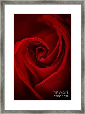 Flame Framed Print by Amy Porter